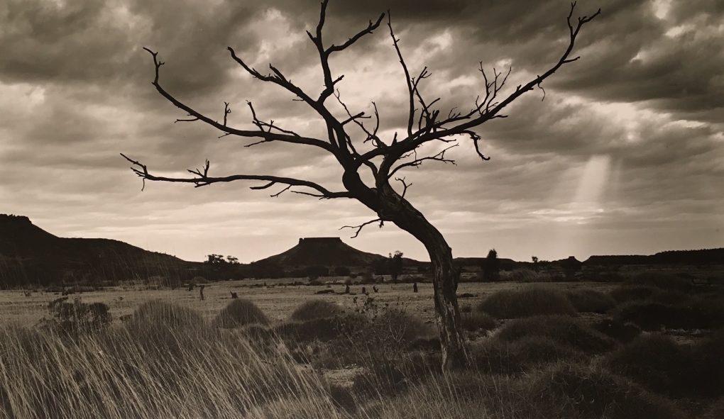 Exhibition: Waiting for Rain – Bob Kersey