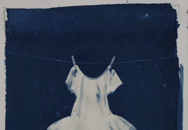 Workshop: Cyanotype and Van Dyke printing with Kim Sinclair
