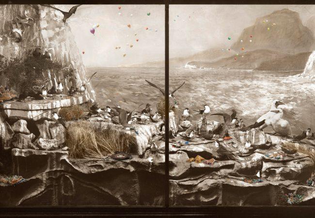 Exhibition: Wild Life, Australia. Anne Zahalka