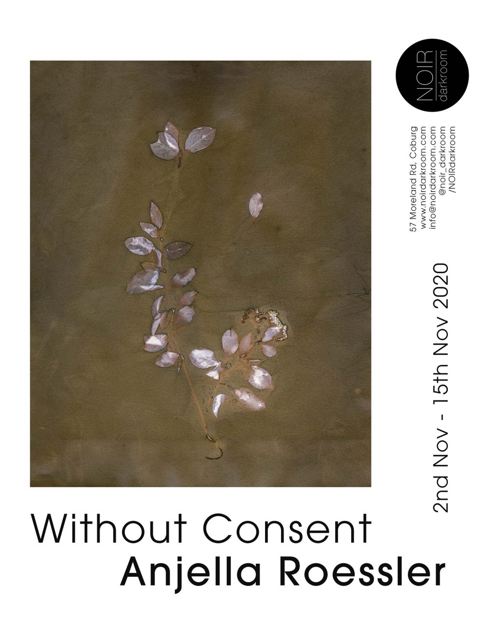 Exhibition: Without Consent – Anjella Roessler
