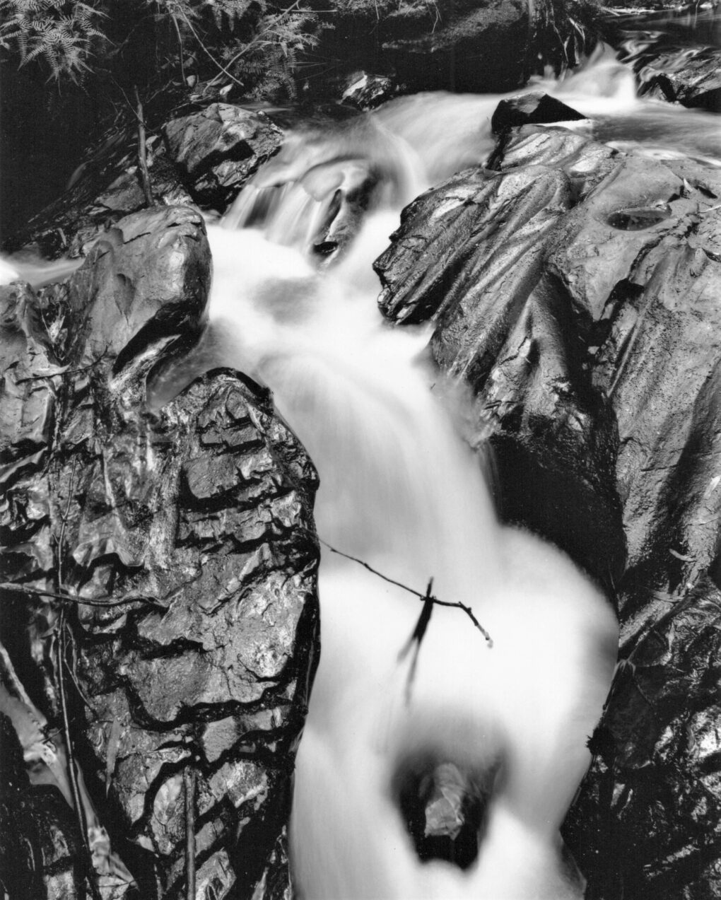 My black & white world by Murray White