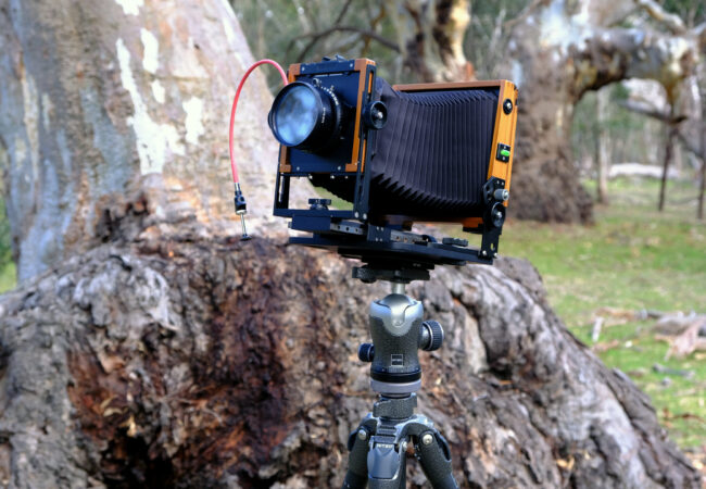 View Camera Australia back online